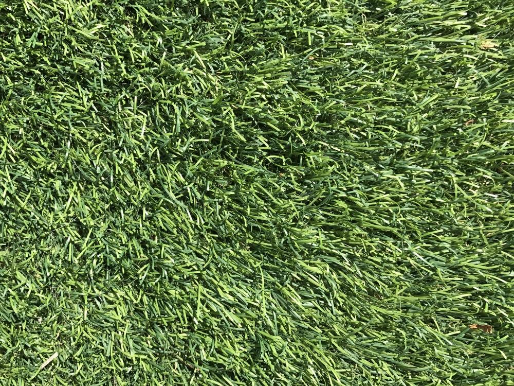 sentetik çim halı