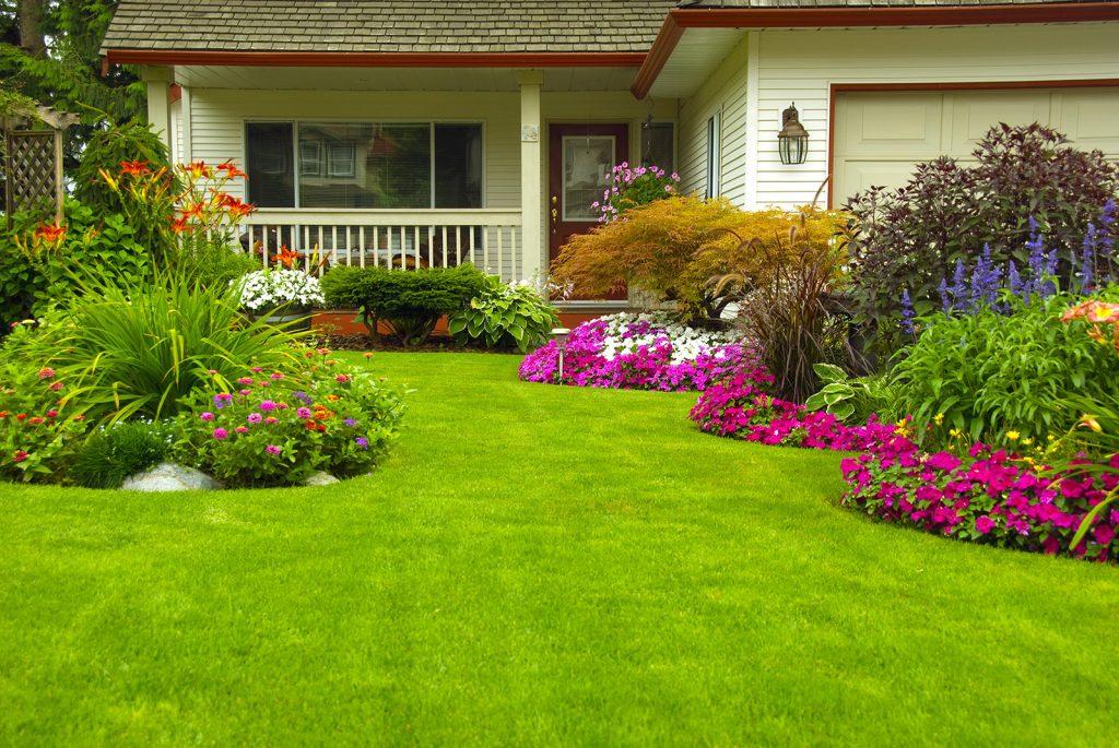 dekoratif sentetik çim halı